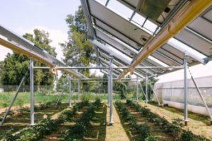 Ombrea lève 1 million d'euros pour promouvoir une agriculture durable et performante auprès notamment de Région Sud Investissement