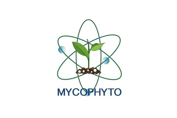 MYCOPHYTO